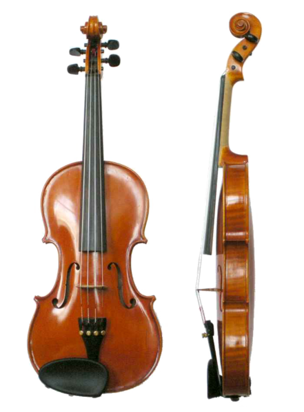 10 Interesting Facts About the Violin | Take Note